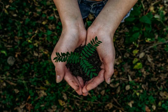 duurzaam beleggen_beleggenvergelijken